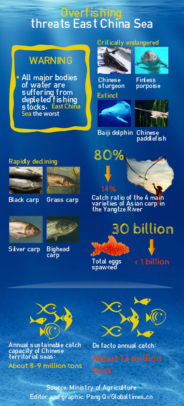 Overfishing threats East China Sea.Graphics:Globaltimes.cn