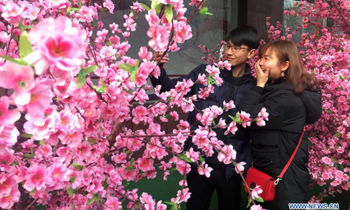 A couple take selfies among peach flowers on the Valentine's Day in Jinan, capital of east China's Shandong Province, Feb. 14, 2017. (Xinhua/Guo Xulei)
