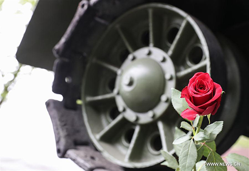 Victory in europe day commemorated in berlin global times a rose is seen near a tank model during a series of memorial activities to commemorate the 72nd anniversary of the end of world war ii in europe publicscrutiny Gallery