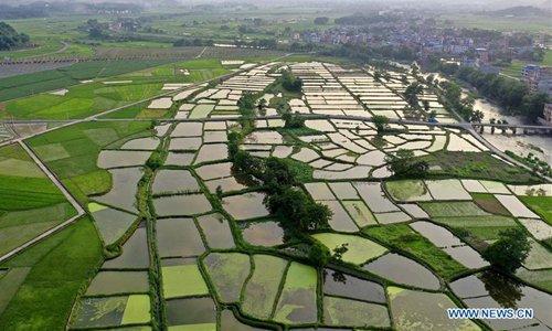 Countryside scenery by Lianxi River in Yongzhou, C China - Global Times