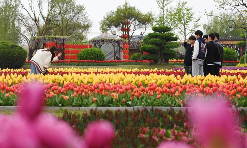 Tourists take photos amid tulips at Tianbo General Yang Ye's Mansion scenic spot in Kaifeng, central China's Henan Province, April 3, 2021. (Xinhua/Zhang Haoran)