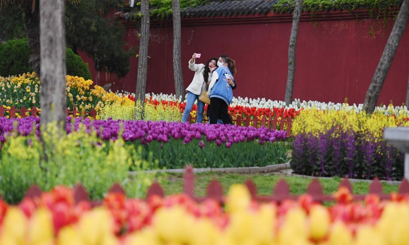 Tourists take selfies amid tulips at Tianbo General Yang Ye's Mansion scenic spot in Kaifeng, central China's Henan Province, April 3, 2021. (Xinhua/Zhang Haoran)