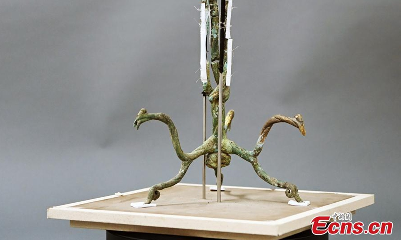 This photo taken on April 8, 2021 shows the bronze sculpture of a tree excavated in 1986 from the Sanxingdui Ruins site in Guanghan, southwest China's Sichuan Province.Photo:China News Service