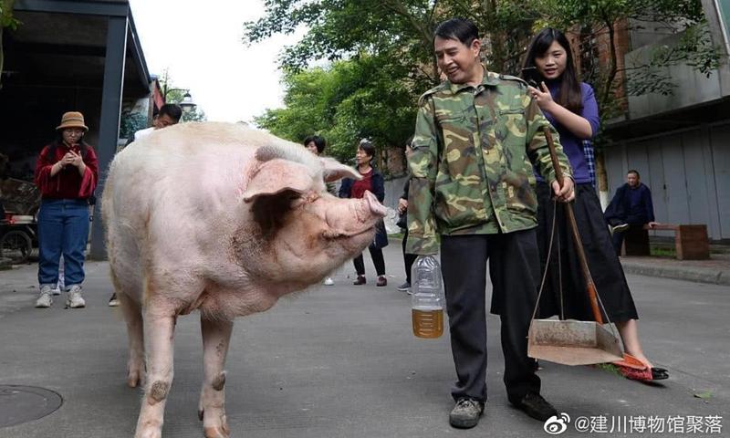 Photo: Weibo account of Sichuan Museum of Jianchuan