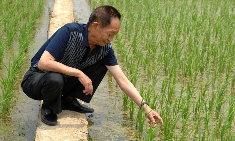 File photo taken on May 10, 2007 shows Yuan Longping inspecting the trial plantation of hybrid rice.(Photo: Xinhua)