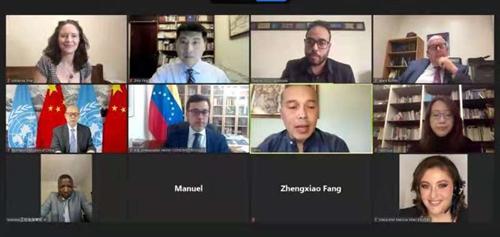Screenshot of the video meeting