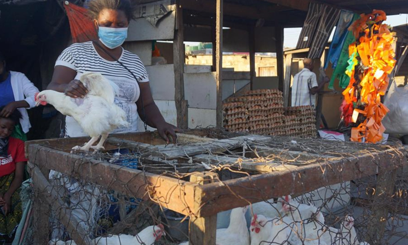 Ruth Phiri, a trader specialized in reselling poultry, works in Lusaka, Zambia, on July 5, 2021. (Photo: Xinhua)