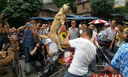 Uproar Over Dog Meat Calls Tradition Into Question