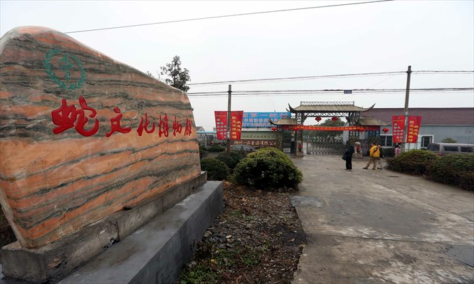 The village of Zisiqiao's flagship snake museum. Photo: GT/Yang Hui