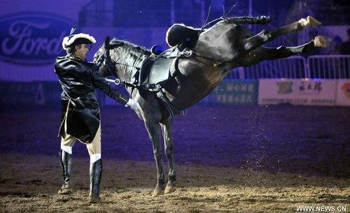 A horseman stages an equestrian performance at the opening ceremony of the second Ordos Dalate International Horse Culture Festival in Dalate Banner of Ordos, north China's Inner Mongolia Autonomous Region, August 25, 2012. Some 60 horsemen from 15 countries and regions gave performances at the festival's opening ceremony Saturday night. Photo: Xinhua
