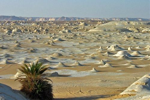 White Desert, Egypt  (Source: www.huanqiu.com)