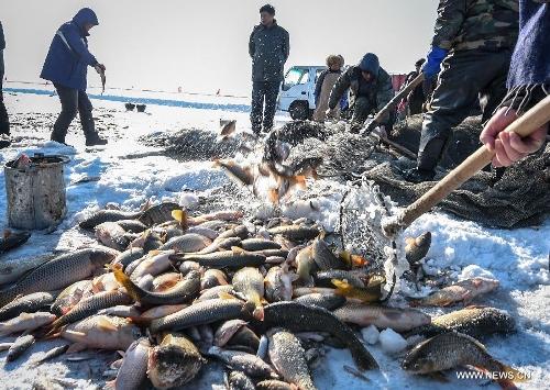 Ice fishing event held in ne china 39 s chagan lake global for Ice fishing nebraska