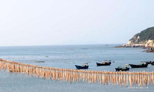 Aquatic products and fishing vessel are seen at a port of the Nanji Island, East China's Zhejiang Province, October 14, 2012. The 7.64-square kilometer Nanji Island, as the largest island of the Nanji Islands, was named for its muntjac shape. The archipelago were listed as China's first level-five marine nature reserve in 1990. Photo: Xinhua