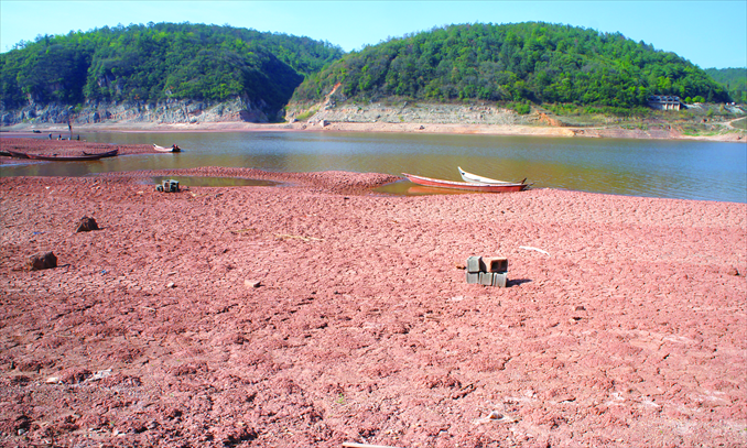Much of a reservoir has dried up in Yuxi, Yunnan Province, on April 14. Photo: CFP