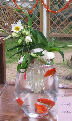 Lu Haigen's Chinese sacred lily blooms alongside live goldfish. Photo: Courtesy of Shanghai Gongqing Forest Park