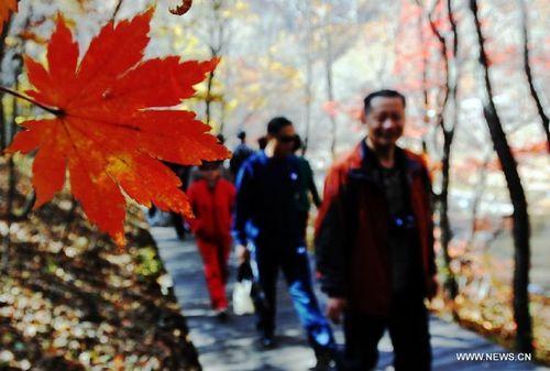 Tourists visit Guanmen Mountain in Benxi, Northeast China's Liaoning Province, October 14, 2012. Photo: Xinhua