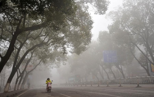 A woman rides on the fog-shrouded Chongxin Road in Guilin, southwest China's Guangxi Zhuang Autonomous Region, Jan. 13, 2013. Dense fog on Sunday hit China's east and central regions from the northeast to the south, causing serious air pollution. (Xinhua/Lu Bo'an)