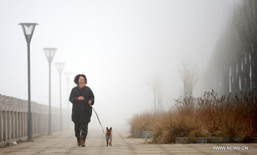 A citizen walks her dog amid dense fog in Nanchang City, capital of east China's Jiangxi Province, Jan. 12, 2013. A fog hit many parts of Jiangxi on Saturday. (Xinhua/Zhou Ke)