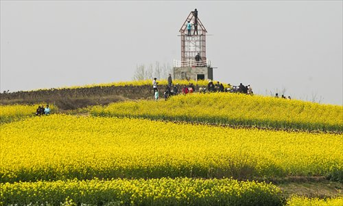 Rapeseed flowers cover hills as far as the eye can see, casting the landscape in a lovely yellow in Hanzhong, Shaanxi Province. Photo: CFP