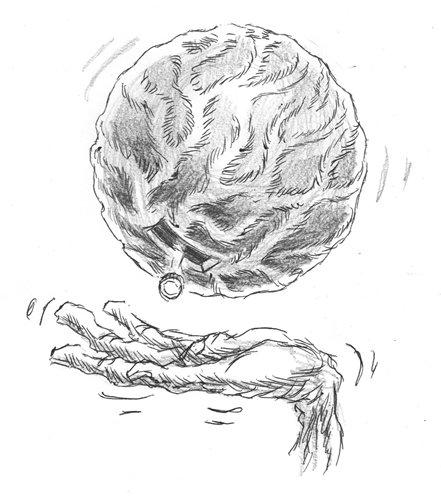 狮子流汗简笔画