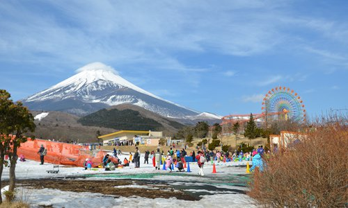 Chinese tourists celebrate the Eve of Spring Festival at the foot of Mount Fuji in Japan on January 27. Photo: CFP