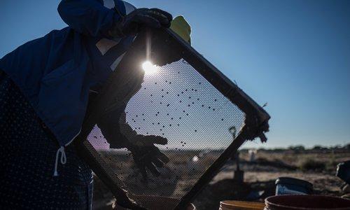 South Africa's 'zama-zamas' rejoice in the legalization of mining
