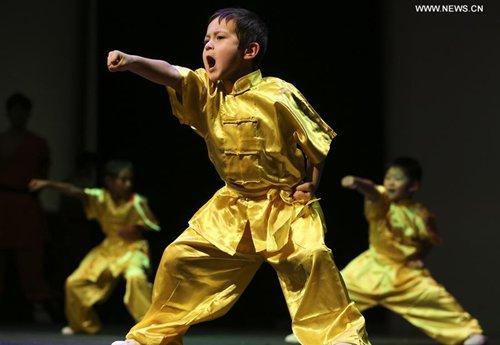 Shaolin Kung Fu show warmly applauded in Houston