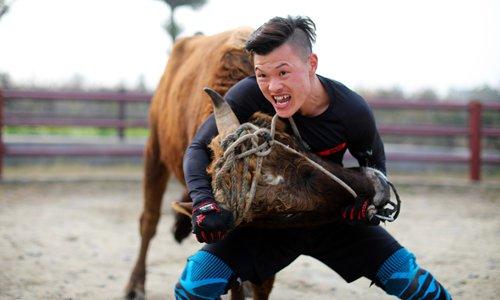 Ancient martial art of bull wrestling adapting to modern era