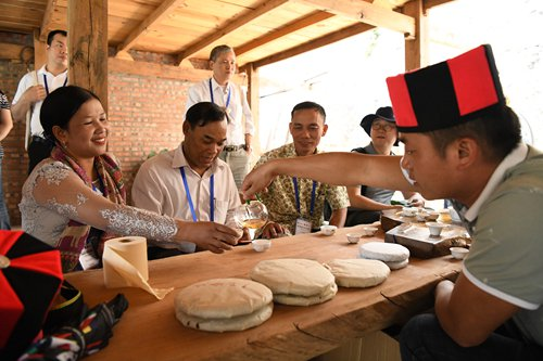 Village chiefs from ASEAN countries study China's poverty reduction efforts - Global Times