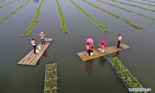 Tuanzhuang Village in China's Jiangsu utilizes aquatic environment for local tourism