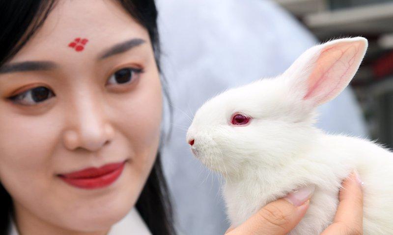 Mid-Autumn Festival Celebration in China