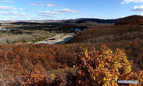 Autumn view in Zalantun, North China's Inner Mongolia