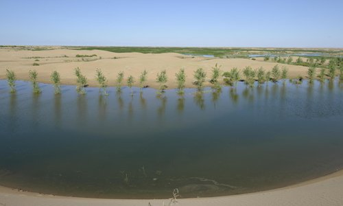 Northern China desert sets example in combating desertification