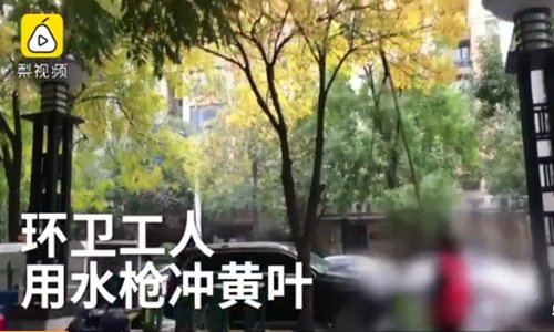 Sanitation workers pressured to use water cannons to clear leaves on trees
