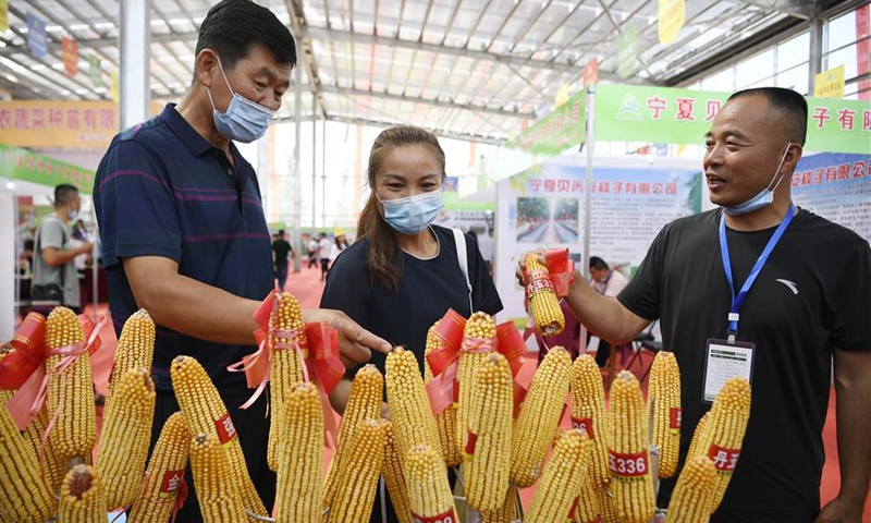 Participants learn about corn seed products during the 7th Ningxia Seeds Expo held at Pingluo County of Shizuishan City, northwest China's Ningxia Hui Autonomous Region, July 27, 2020. (Xinhua/Wang Peng)