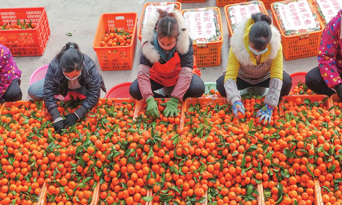 Picking their way out of poverty 