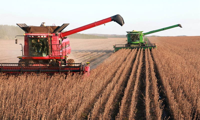 Soybeans are harvested in Heilongjiang province.File photo: Xinhua