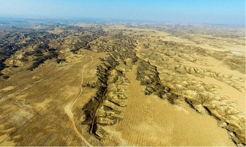 The solar park was once a barren desert. Photo: Courtesy of Huawei