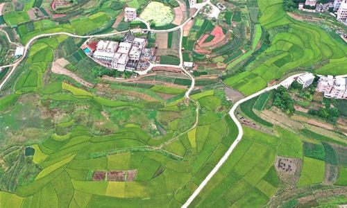 Aerial photo taken on Oct. 16, 2020 shows a rural landscape of Pumiao Township, Yongning District, Nanning, south China's Guangxi Zhuang Autonomous Region. (Xinhua/Zhou Hua)