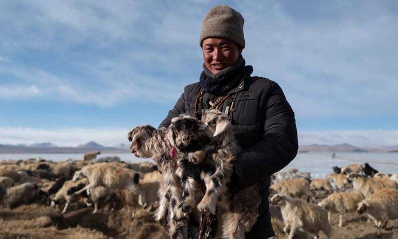 A herdsman holding lambs stands by the frozen Puma Yumco Lake, southwest China's Tibet Autonomous Region, March 6, 2021.Photo:Xinhua
