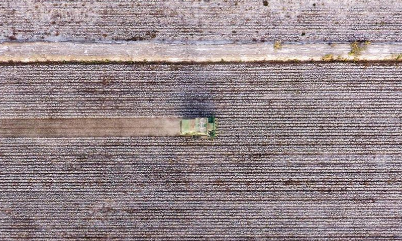 Aerial photo taken on Oct. 24, 2019 shows a harvesting machine picking cotton in a field in Awat County, northwest China's Xinjiang Uygur Autonomous Region. With a long history of cotton planting, Awat is known as the Town of Cotton in China. The county boasts high-quality cotton and high-efficiency in production. (Xinhua/Sadat)