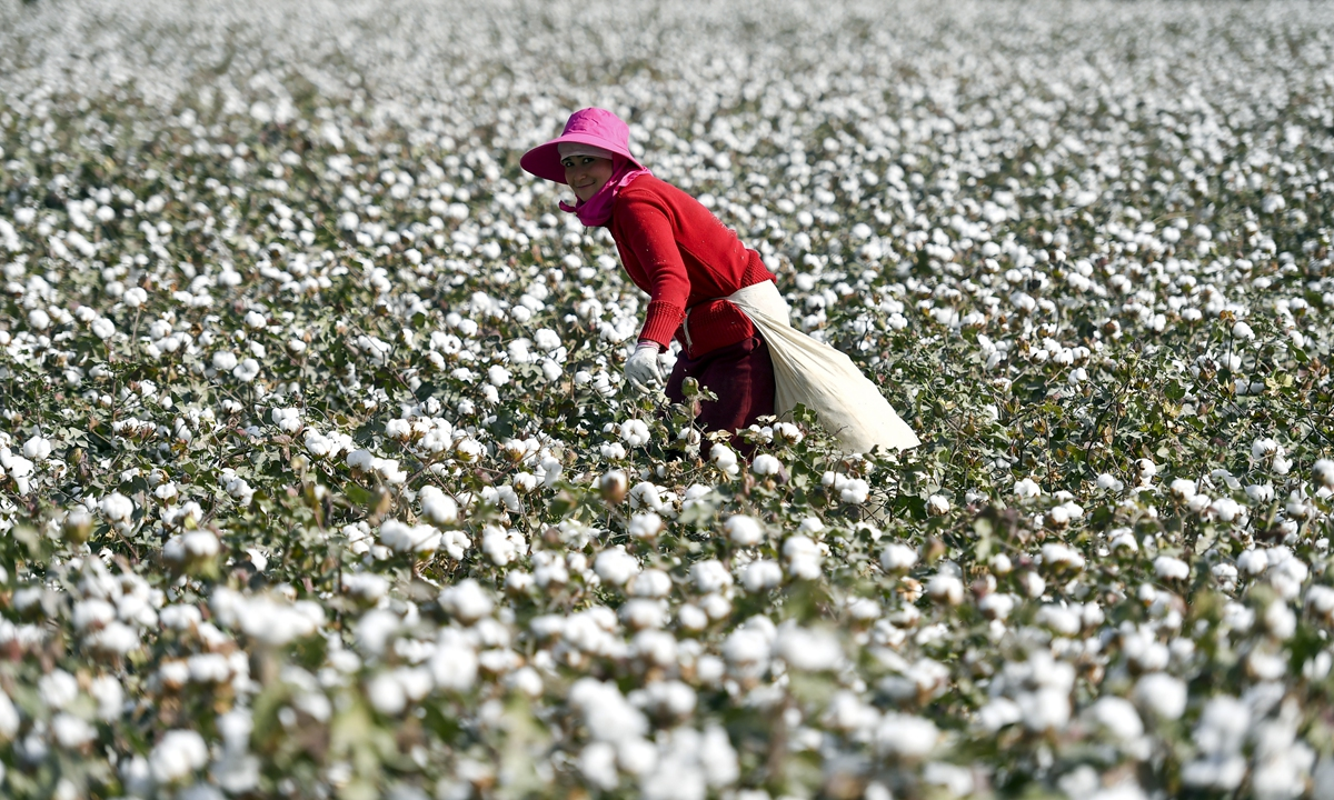 A worker picks cotton at a farmland in Awati County, Aksu Prefecture in Northwest China's Xinjiang Uygur Autonomous Region on October 10, 2018. The county is praised as
