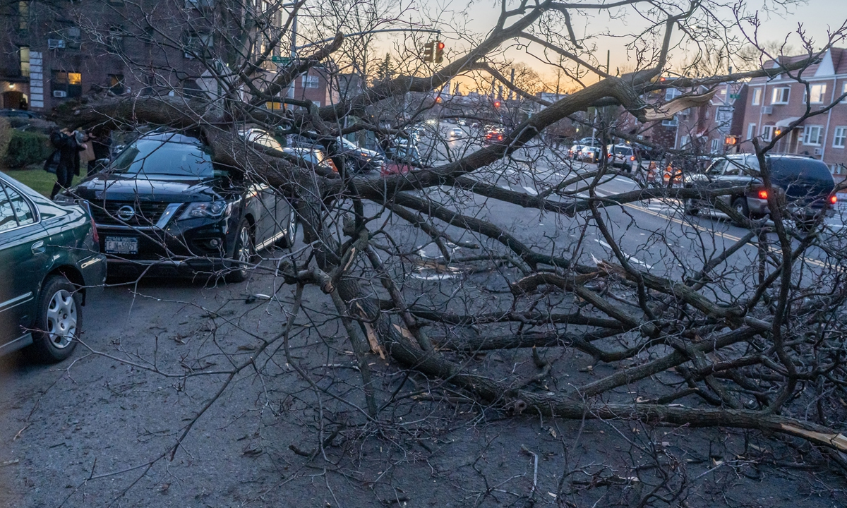 A vehicle seen smashed by a tree toppled by high winds at the Astoria neighborhood in Borough of Queens. The National Weather Service has issued a wind advisory for Friday afternoon through evening in the tristate area with wind gusts reaching 40-50 mph. Photo: VCG