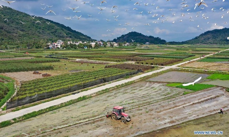 Aerial photo taken on April 5, 2021 shows farmers working in a field in Guangpo Town, Lingshui Li Autonomous County, south China's Hainan Province. As the temperature gradually rises around the time of Qingming Festival, farming activities are in full swing across the country, from the north to the south.(Photo: Xinhua)