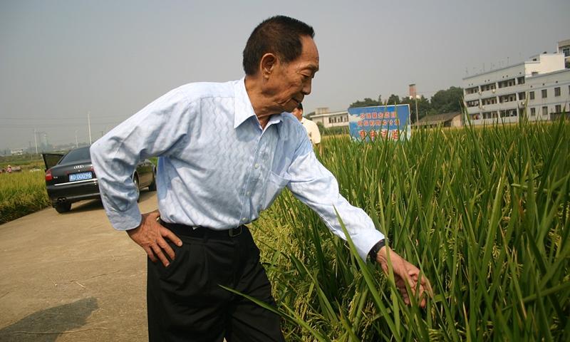 Yuan Longping Photo:CFP
