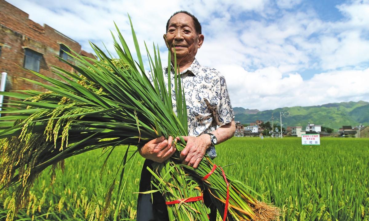 Yuan Longping at a rice field in Liande Villagein South China's Guangxi Zhuang Autonomous Regionin August 2017.Photo:IC