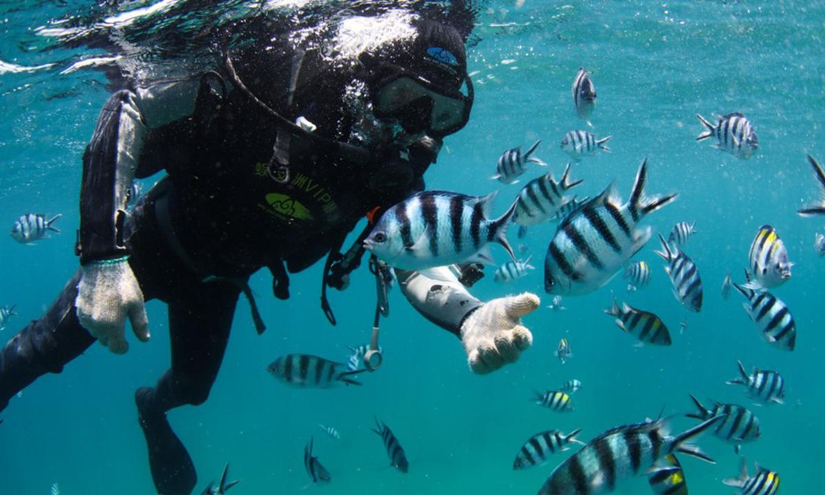 A staff member dives in the sea area of Wuzhizhou Island in Sanya, south China's Hainan Province, April 27, 2020. (Xinhua/Yang Guanyu)