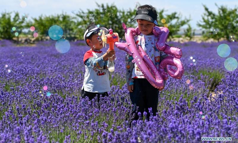 Children play in a lavender farm in Huocheng County, northwest China's Xinjiang Uygur Autonomous Region, June 13, 2021. (Photo: Xinhua)
