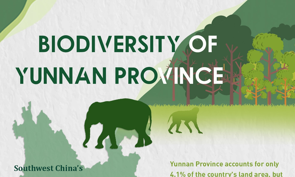 Southwest China's Yunnan is known as the Kingdom of Animals and Plants. It ranks first in China in terms of biodiversity.