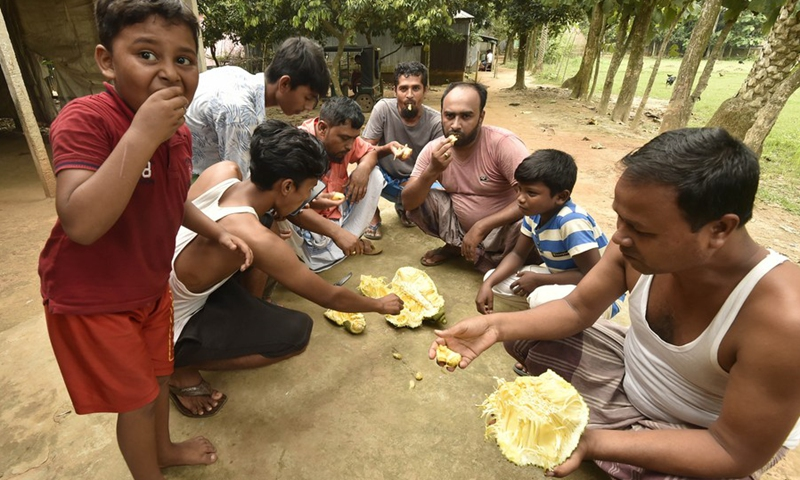 People eat jackfruits at a village in Gazipur on the outskirts of Dhaka, Bangladesh, on June 27, 2021.(Photo: Xinhua)